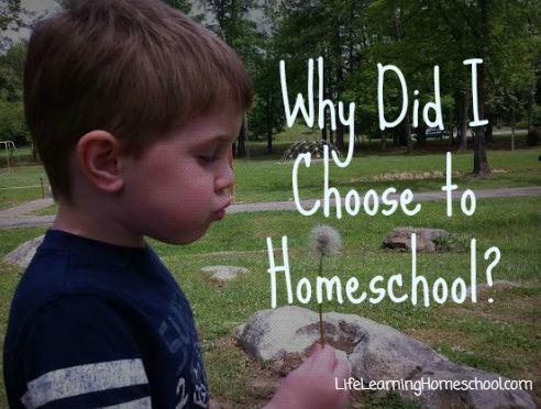 Why Did I Choose Homeschool?